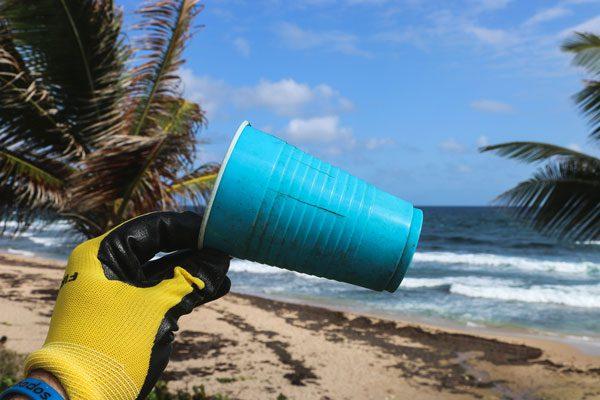 Einwegbecher aus Plastik verboten - denn sie enden oft in Meeren oder an Stränden